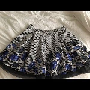 Skirt form express